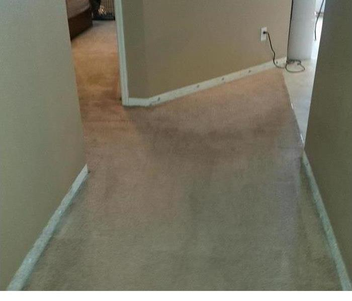 Water Damage and Carpet Cleaning After