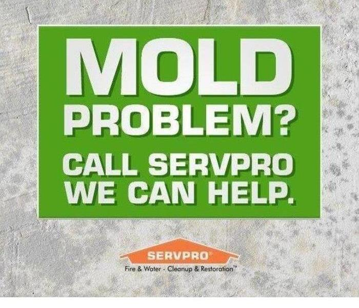 "grey background with green box that says ""mold problem? we can help. call SERVPRO"""